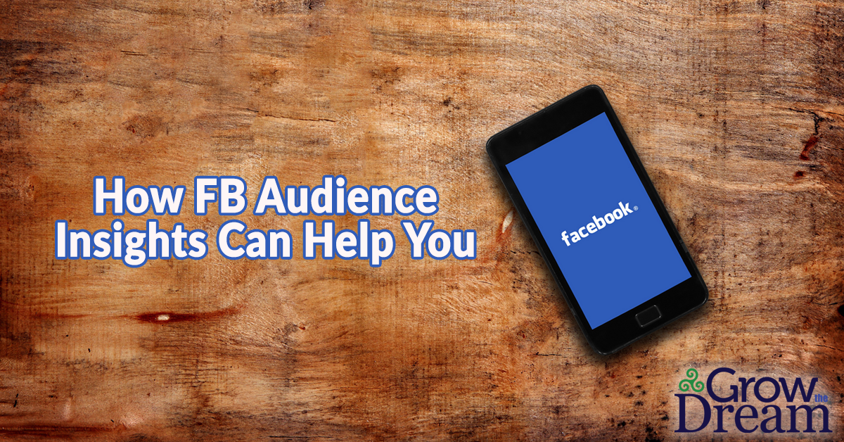 How Facebook Audience Insights Can Help Build Your Business